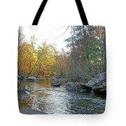 Autumn Flows Toward Winter Tote Bag