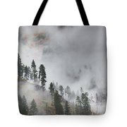 Autumn Fog Tote Bag