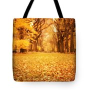 Autumn Foliage - Central Park - New York City Tote Bag by Vivienne Gucwa