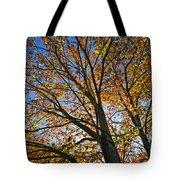 Autumn Foliage Tote Bag