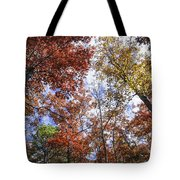 Autumn Forest Canopy Tote Bag