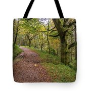 Autumn Forest Path - Tote Bag