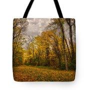 Autumn Forest Tote Bag by Stuart Deacon