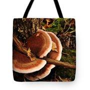 Autumn Fungi Tote Bag