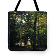 Autumn Glen Tote Bag