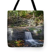 Autumn Glen Olmsted Falls Tote Bag by Lon Dittrick