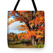 Autumn Glory Tote Bag by Gigi Dequanne
