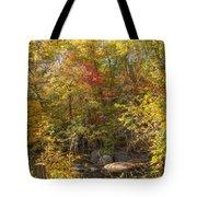 Autumn Glory - Unami Creek Sumneytown Pennsylvania Usa Tote Bag
