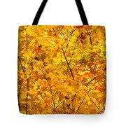 Autumn Gold Photograph Tote Bag