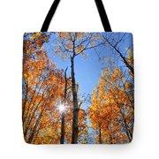 Autumn Gold Sunburst Tote Bag
