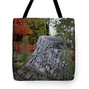 Autumn Gone-by Tote Bag