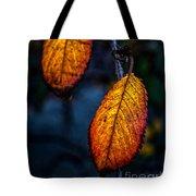 Autumn Gradation Tote Bag
