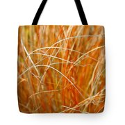 Autumn Grass Abstract Tote Bag