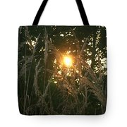 Autumn Grasses In The Morning Tote Bag