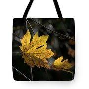 Autumn Highlight Tote Bag