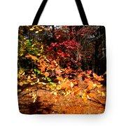 Autumn Hues Tote Bag