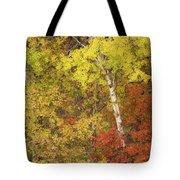 Autumn Impressions Tote Bag