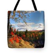 Autumn In Arrowhead Provincial Park Tote Bag
