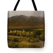 Autumn In August Brooks Range Alaska Tote Bag