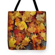 Autumn In Canada Tote Bag