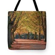 Autumn In Clifton, Bristol Tote Bag