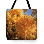 Autumn In Curtin Tote Bag