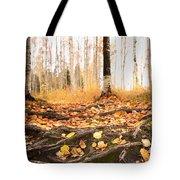 Autumn In Finland Tote Bag