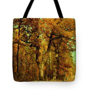 Autumn In Forest Tote Bag