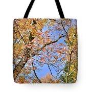 Autumn In Full Swing Tote Bag