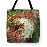 Autumn In Hampstead Tote Bag