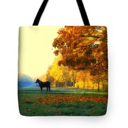 Autumn In Kathrines Way Tote Bag