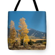 Autumn In Hart Pairie Tote Bag