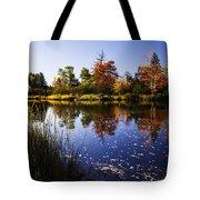 Autumn In Maine Usa Tote Bag