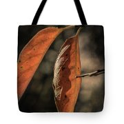 Autumn In May Tote Bag by Elaine Teague