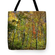 Autumn In Schooley's Mountain Park 2 Tote Bag