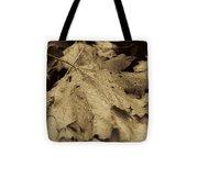 Autumn In Sepia Tote Bag