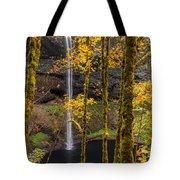 Autumn In Silver Falls Tote Bag