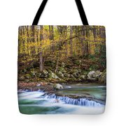 Autumn In Smoky Mountains National Park  Tote Bag