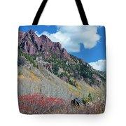 Autumn In The Aspen Hills Tote Bag