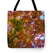 Autumn In The Canopy Tote Bag