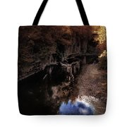 Autumn In The Canyon Tote Bag