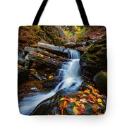 Autumn In The Catskills Tote Bag