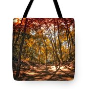 Autumn In The Dunes Tote Bag