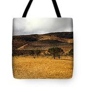 Autumn In The High Desert Tote Bag