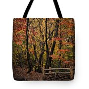 Autumn In The Rambles Tote Bag