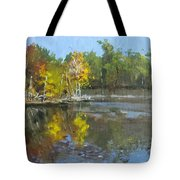 Autumn In The Rock Quarry Tote Bag