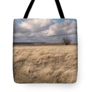 Autumn In The Steppes Tote Bag