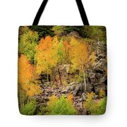 Autumn In The Uinta Mountains Tote Bag