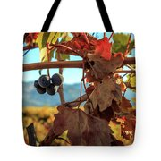 Autumn In The Wine Country Tote Bag