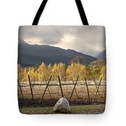 Autumn In The Winelands Tote Bag